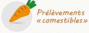 logo comestible
